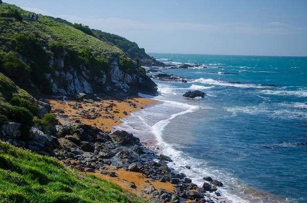 Banques impact environnement Nouvelle-Zélande