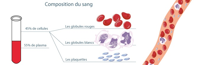 association-laurette-fugain-composition-sang