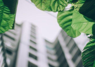 SCI Perial Euro Carbone : un placement immobilier dans l'air du temps