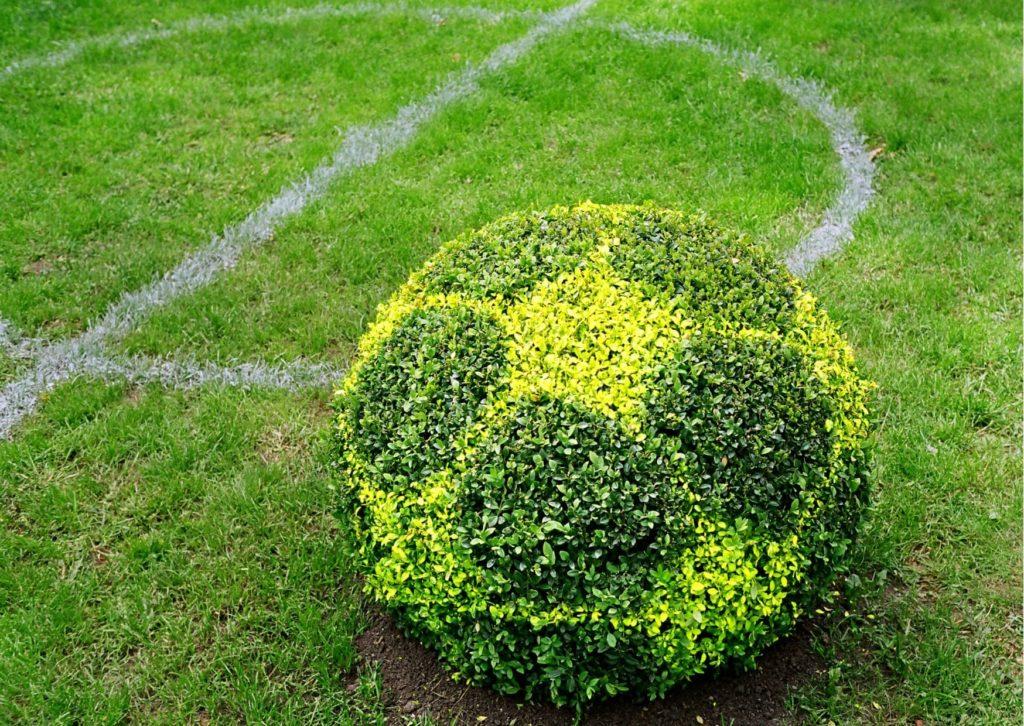 Indice ESG football
