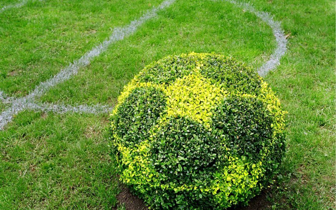 Indice ESG pour les clubs de football : l'éthique s'invite sur le terrain