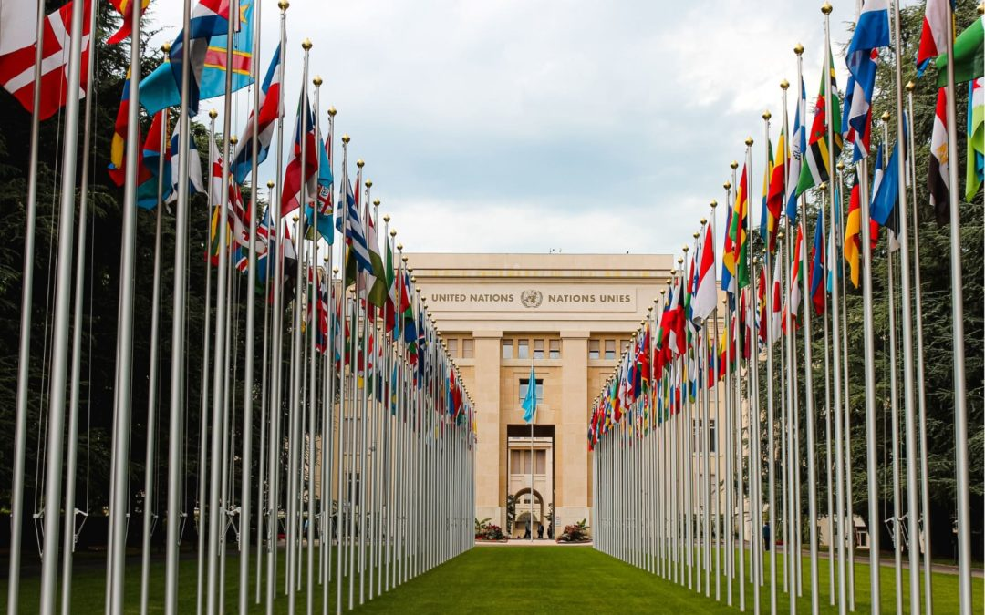 Les Objectifs de Développement Durable établis par l'ONU