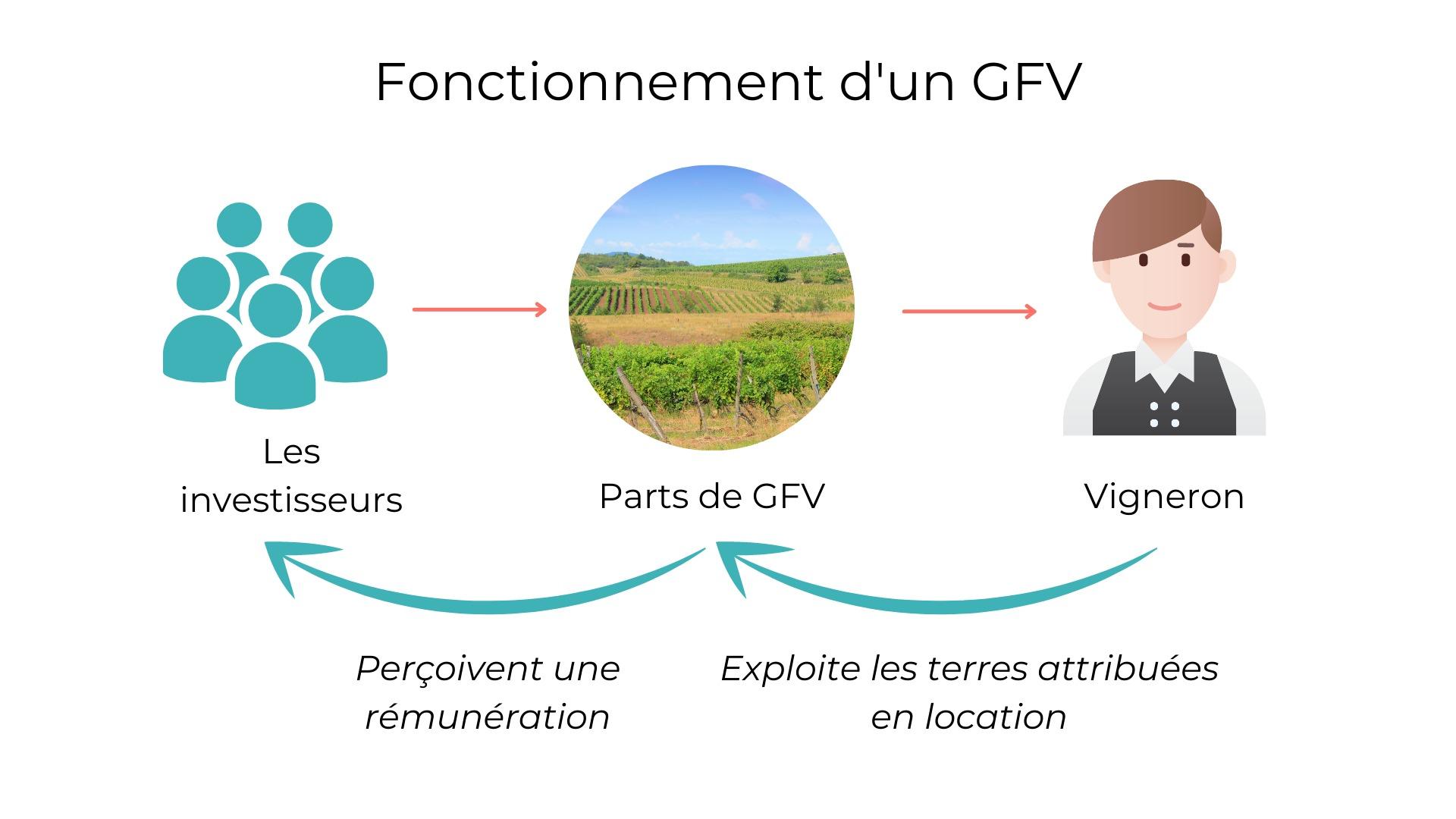 Fonctionnement d'un GFV