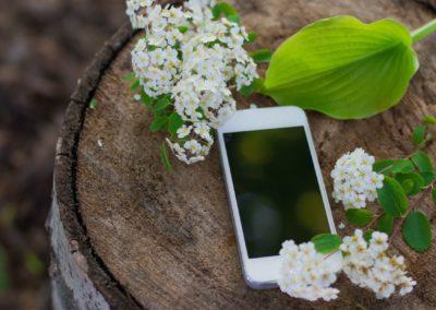 Application : savez-vous planter des arbres… avec votre smartphone ?