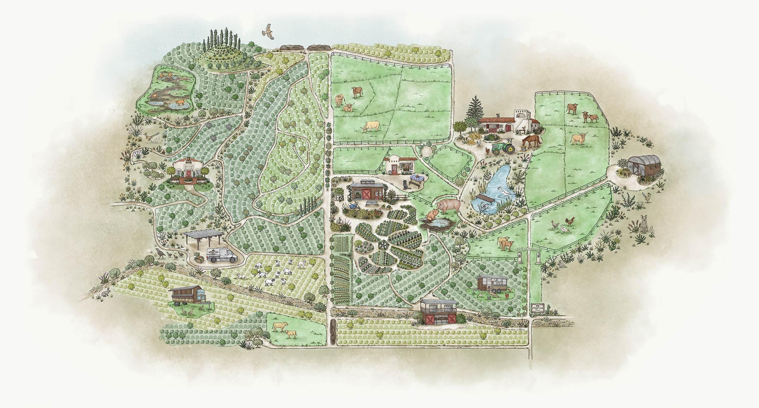 apricot-lane-farm-permaculture