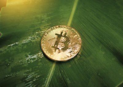 Bitcoin et écologie… est-ce possible ?
