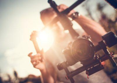 Cinéma et écologie : l'art de se mettre au vert