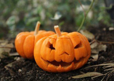 Halloween zéro déchet : faites-vous une peur verte !