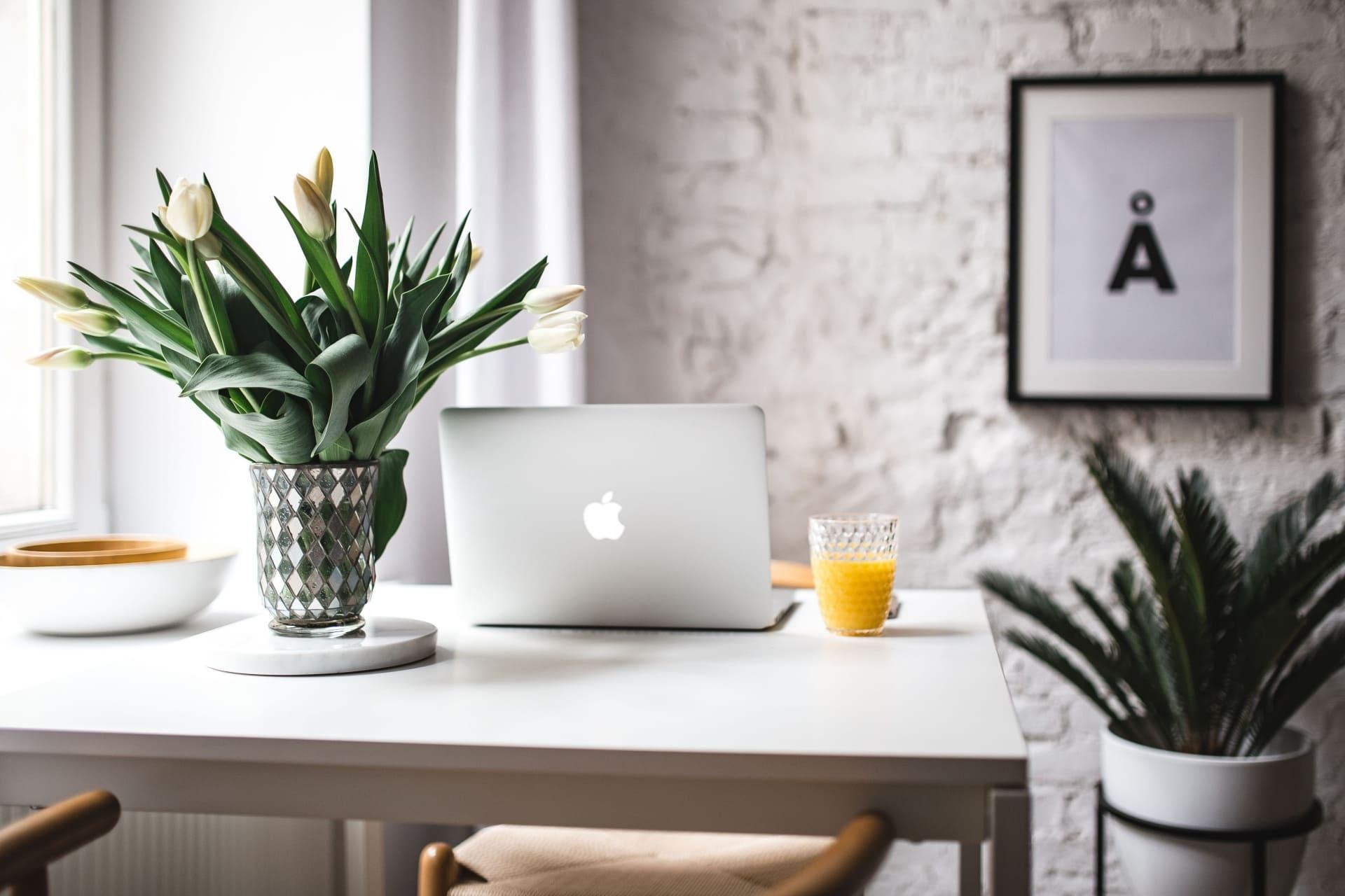 Ordinateur et plante sur bureau