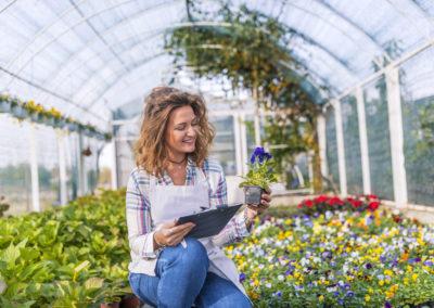 Découvrez les emplois verts et durables propices au recrutement