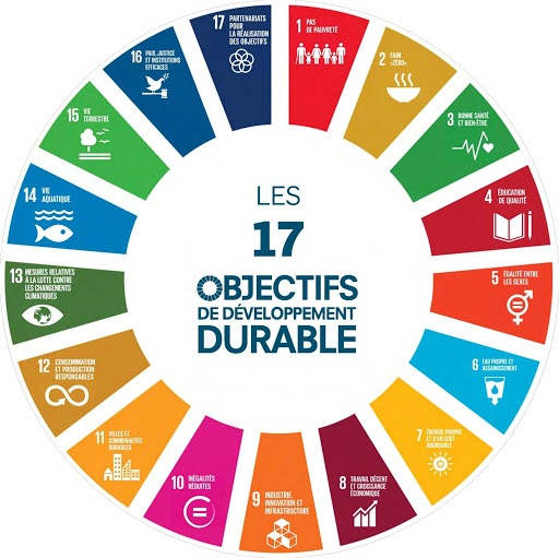 objectif-developpement-durable-onu